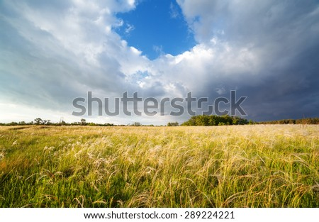 Beautiful cloudy sunset at the field. Summer landscape. - stock photo