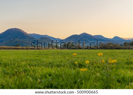 beautiful colorful alpine meadow in a mountain valley at sunset on a background of mountains and hills