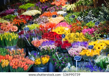 beautiful colorful flower for sale - stock photo