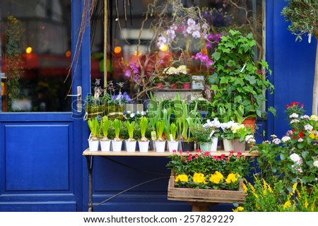 Beautiful colorful flowers sold on outdoor flower shop in Paris, France - stock photo