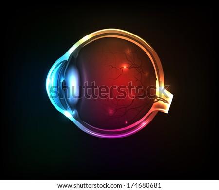 Beautiful colorful human eye on a dark background. - stock photo
