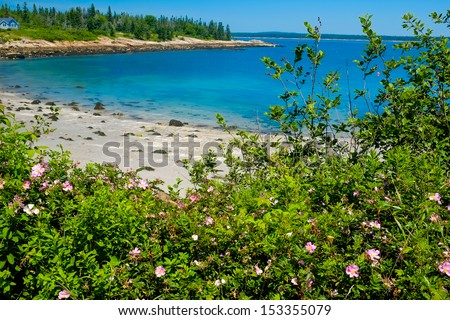 Beautiful colorful private cove and sandy beach on the Maine Coast - stock photo