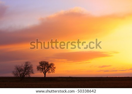 Beautiful colorful sunrise out in the country with a couple cottonwood trees and the fields of the farms. - stock photo