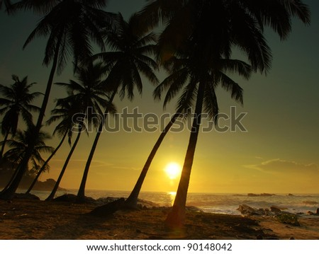 Beautiful colorful sunset over sea and boulders seen under the palms on Sri Lanka - stock photo
