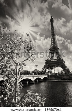 Beautiful colors and vegetation near Eiffel Tower and Seine river - Paris. - stock photo