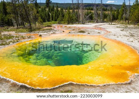beautiful colors in the morning glory pool in yellowstone national park