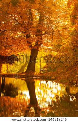 Beautiful colors of autumn landscape by the lake - stock photo