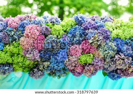 Beautiful composition of hydrangea