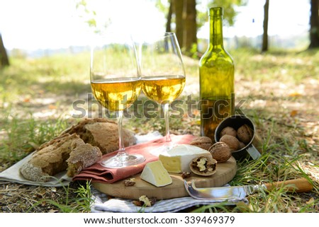 Beautiful composition of white wine, cheese, nuts and bread on the ground in the park