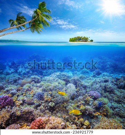 Beautiful Coral reef with fish on the background of a small island. Maldives - stock photo
