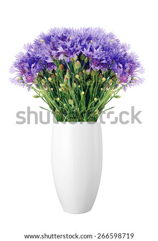 Beautiful cornflowers in vase isolated on white background - stock photo