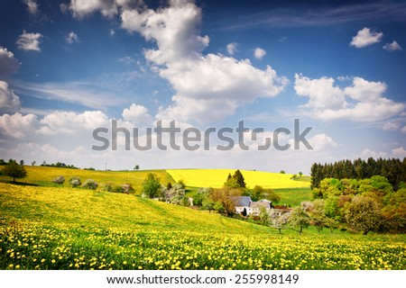 Beautiful countryside landscape at sunny summer day - stock photo