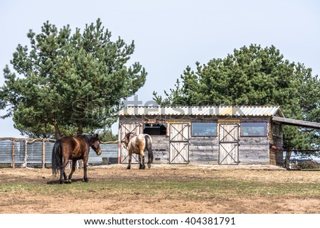 Beautiful countryside landscape - horses on the ranch, old barn on rural farm - stock photo