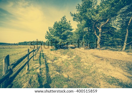 Beautiful countryside landscape of rural dirt road and pine tree forest near farmland, vintage photo - stock photo