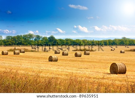 Beautiful countryside landscape. Round straw bales in harvested fields and blue sky with clouds - stock photo