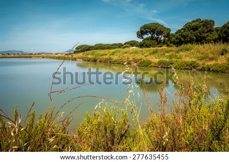 Beautiful countryside landscape with a lake and green vegetation - stock photo