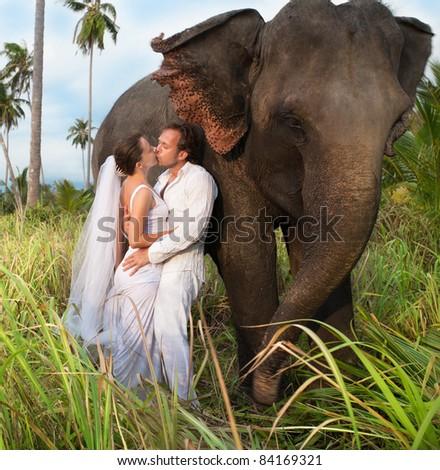 beautiful couple with elephant in wedding dress - stock photo