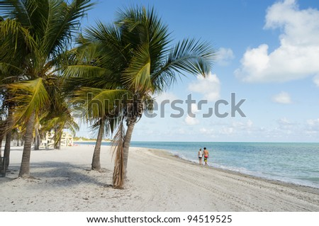 Beautiful Crandon Park Beach in Miami. Florida. - stock photo