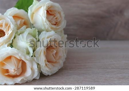 beautiful cream roses - stock photo