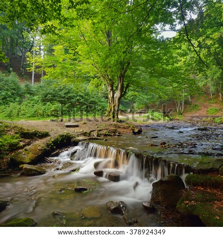 Beautiful creek with cascade waterfall in the forest. - stock photo