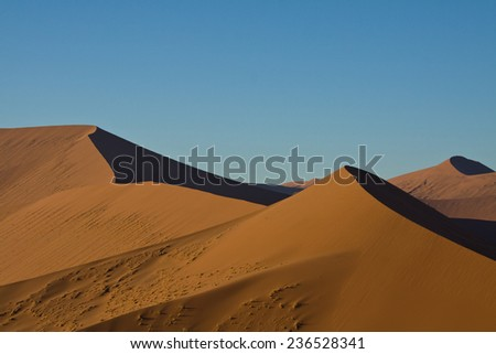 Beautiful curves of light and shadow along Sand Dunes in the Namib Desert, Namib-Naukluft National Park, Namibia
