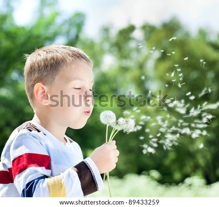 Beautiful cute boy in the park blowing on dandelion in summer time