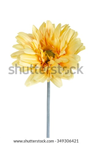 Beautiful daisy gerbera artificial flower isolated on white background - stock photo