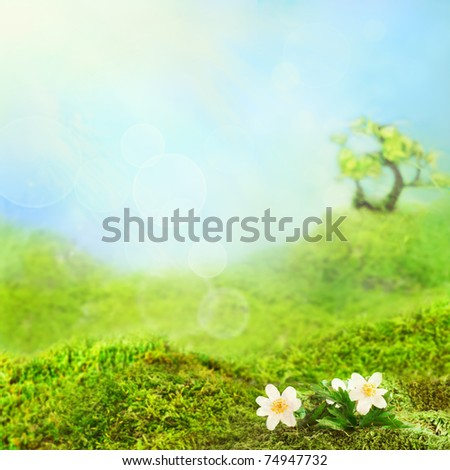 Beautiful day in the green valley. - stock photo