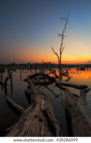 Beautiful dead tree in lake at twilight time, Long exposure technique And Colorful image - stock photo