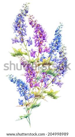 Beautiful  Delphinium Flowers Garland. Watercolor hand painting,. - stock photo