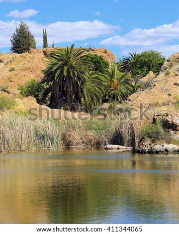 Beautiful desert oasis landscape scene, with pond and palm trees.  - stock photo
