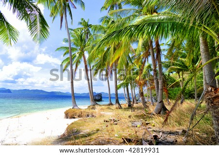 beautiful deserted tropical beach