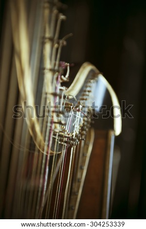 Beautiful detail of an ancient harp of last century. Accents are on the tuning pegs. Tilt shift lens used to accent the strings and sublime toned filter applied for more natural effect - stock photo