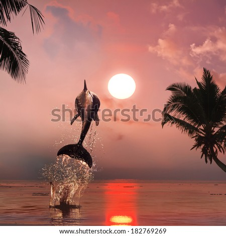 beautiful dolphin jumped at the sunset time on tropical background waterscape - stock photo