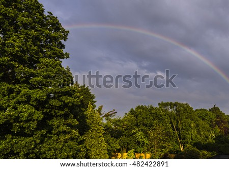 Beautiful double rainbow and sunlight caught in trees over north London, UK.