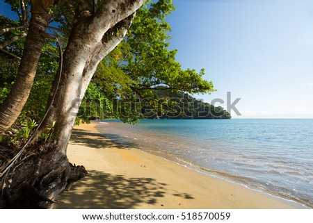Beautiful dream paradise beach in Masoala national park, Madagascar. Blue sky and clear sea. Wilderness virgin nature scene