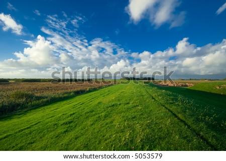 beautiful dutch farmland landsape - stock photo