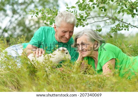 Beautiful elderly couple in field with toy sheep