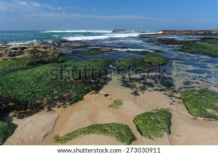 Beautiful empty rocky beach from the north of Portugal during low tide - stock photo