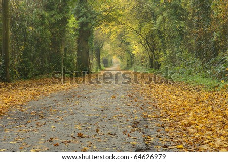 Beautiful English countryside Autumn Fall landscape