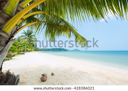 Beautiful Exotic beach with coconut palm  - stock photo