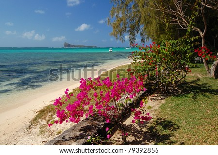 Beautiful exotic beach with tropical flowers on Mauritius Island - stock photo