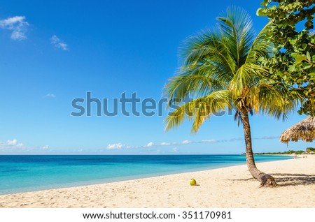 Beautiful exotic Caribbean beach of golden sand, coconut palm trees against the azure waters of Caribbean Sea , Cuba, Caribbean Islands, Central America - stock photo