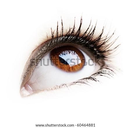 Beautiful Eye of Woman over white background - stock photo