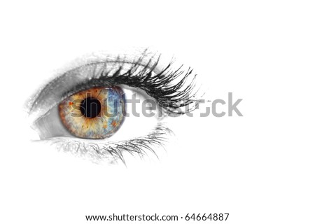 Beautiful Eye of Woman over white background - stock photo