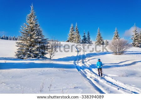 Beautiful fairytale winter landscape with snow-covered spruce trees  - stock photo