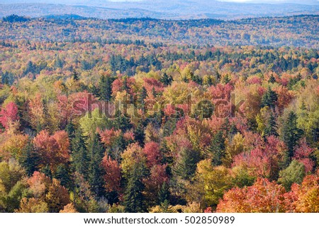 Beautiful fall colors cover the valley floor in the Vermont Mountains