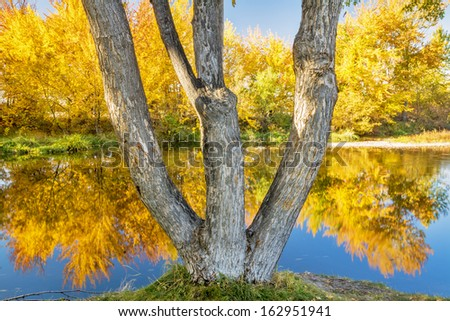 Beautiful fall day with tree reflections in a river - stock photo