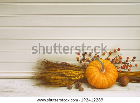 Beautiful Fall Mini Pumpkin with Wheat, Acorns, and Berries on White Board Background with empty room or space for copy, text.  Horizontal vintage - stock photo