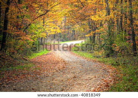 Beautiful Fall scene on curved unpaved road with colorful leaves on trees and in the road